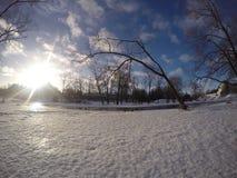 Солнечный ландшафт зимы Стоковая Фотография RF