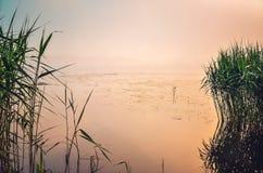 Солнечный ландшафт утра Стоковое Изображение