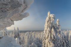 Солнечный день в лесе зимы, ural горы, лес зимы, русское natu Стоковая Фотография