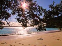 Солнечный день на Новой Зеландии Стоковое Фото