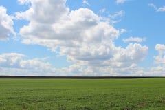 Солнечный день Стоковые Фотографии RF