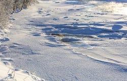 Солнечный зимний день на реке Стоковые Фотографии RF