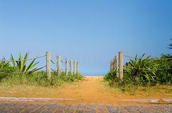 Солнечный и зеленый путь, который нужно пристать к берегу Стоковые Изображения RF