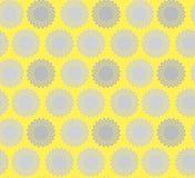 Солнечный конспект цветка Стоковые Изображения RF