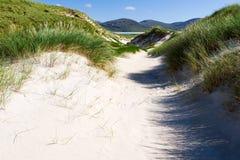 Солнечный пляж с песчанными дюнами, высокорослой травой и голубым небом Стоковые Изображения