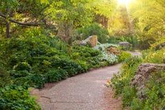 Солнечный сад лета стоковая фотография