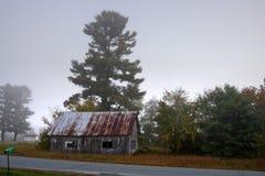 Солнечный свет исчерчивая через туманные деревья на утре осени стоковые фото