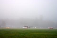Солнечный свет исчерчивая через туманные деревья на утре осени стоковая фотография rf