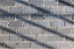 Солнечный свет кирпичной стены Стоковые Фото
