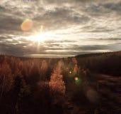 Солнечный свет на осени Стоковая Фотография RF