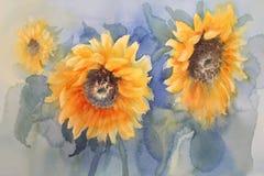Солнцецветы на зеленой акварели предпосылки Стоковое Фото