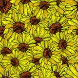 Солнцецвет безшовный, разрушенная картина вектор предпосылки флористический Стоковые Изображения RF