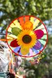 Солнцецвет радуги Стоковые Фотографии RF