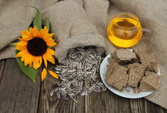 Солнцецвет, семена подсолнуха в сумке, масло и помадки на таблице i Стоковое Изображение