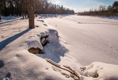 Солнце берега реки реки леса зимы Стоковая Фотография
