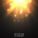 Солнце вектора реалистическое на прозрачном Стоковое Фото