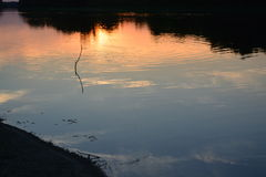 Солнце вечера отражая в воде Стоковое Изображение RF