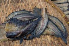 Солнце высушило рыб в рынке Стоковое Изображение