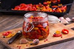 Солнце высушило томаты с оливковым маслом в опарнике Стоковая Фотография
