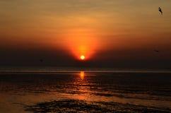 Солнце западное стоковая фотография rf