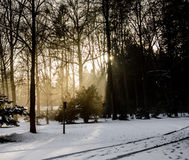 Солнце и снежок стоковое фото rf