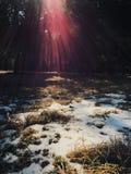 Солнце и снежок Стоковая Фотография RF