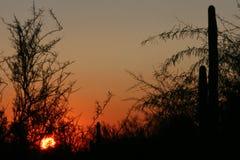 Солнце идя вниз Стоковая Фотография RF
