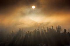 Солнце над холмом Стоковые Изображения RF