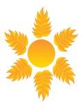 Солнце логотипа Стоковая Фотография