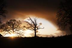 Солнце освещая вверх по облакам Стоковое Фото