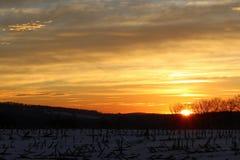 Солнце приходя вверх Стоковые Изображения