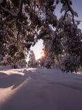 Солнце приходя вниз Стоковое фото RF