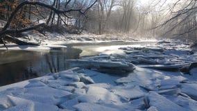Солнце расцеловало утро зимы Стоковые Изображения