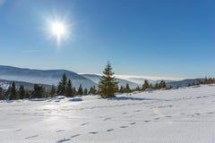 Солнце светя с пирофакелом объектива над снегом покрыло гигантские горы Стоковое Изображение