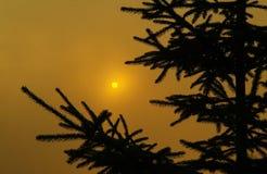 Солнце светя через облако Стоковое Изображение