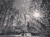Солнце снега стоковое фото rf