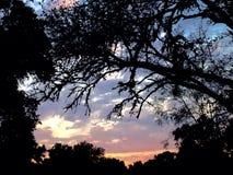 Солнце страны холма Стоковое Изображение RF