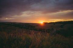 Солнце устанавливает над верхними частями лесных деревьев в облаках Панорамное фото фиолетовых, оранжевых и темных облаков в небе Стоковое фото RF