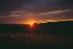Солнце устанавливает над верхними частями лесных деревьев в облаках Панорамное фото фиолетовых, оранжевых и темных облаков в небе Стоковое Изображение