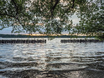 Солнце устанавливая над озером в древесинах, в летнем времени Стоковое Изображение RF
