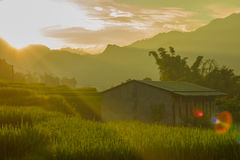 Солнце установило в животики Van Стоковое Изображение RF