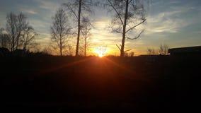 солнце Стоковые Изображения RF