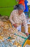 Солнц-высушенные рыбы на стойле рынка Стоковое Изображение