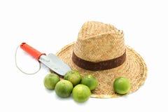 Соломенная шляпа и лопатка и известки руки на белизне стоковое фото rf