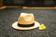 Соломенная шляпа с цветком красивейшие детеныши женщины каникулы бассеина принципиальной схемы стоковое изображение