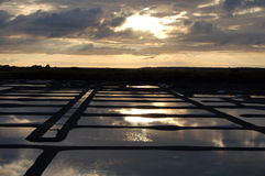 Соль выигрывая в Бретане Франции Стоковая Фотография RF