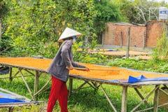 Соль креветки Chili Tay Ninh (Muoi Том), провинция Tay Ninh, Вьетнам Стоковые Изображения