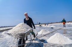 Соль нося тачки пользы работника для сбора селективного Focu Стоковая Фотография RF