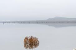соль озера baskunchak стоковое изображение rf