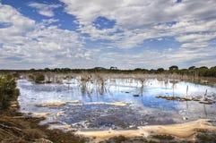 соль озер Стоковая Фотография RF